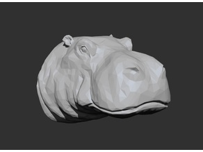 Hippo Head - Low Poly