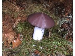 Mushroom-Geocache-Container
