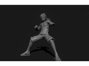 One Piece -  lu  fei