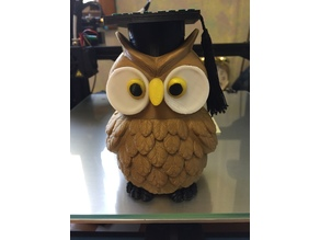 Graduation Wise Owl Maze Gift Box