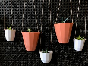 Customizable Hanging Wall Planter