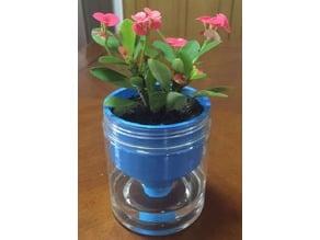 self watering flowerpot