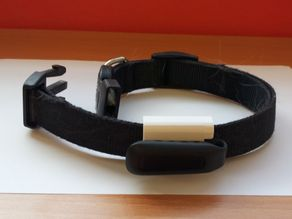 Fitbit fixation on a dog collar