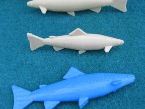 Model Fish - Trout