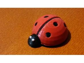Small Cute Ladybug