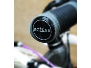 Bike handlebar end cap plug