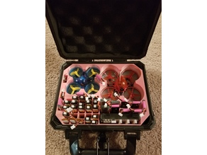 Tiny whoop case insert