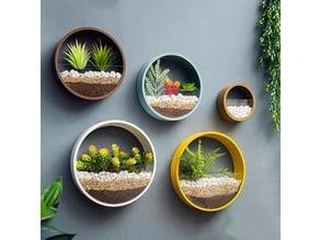 Wall vase - Duvar Saksı