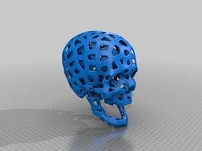 Voronoi Skull with ?cerebral room?