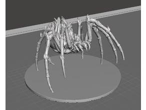 Blazing Spider