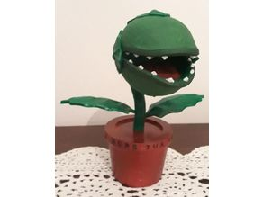Pianta carnivora / Piranha plant