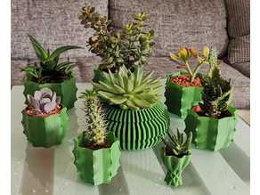 cactus vase - vasemode
