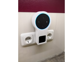 Alexa wall socket carrier