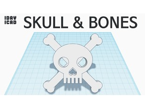 [1DAY_1CAD] SKULL & BONES