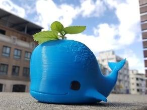Whale pot