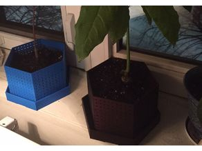 Air pruning pot for bonsai - Variation