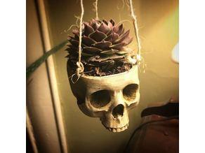 Skull Plant Hanger