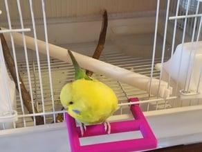 Bird Cage Front Door Perch