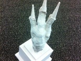 The Chicken Foot Award!