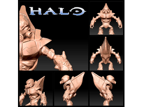 Halo Grunt High Resolution