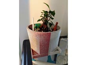 Bonsai Planter pot