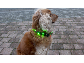 Case for Micro:Bit - Colorful Dog Collar Project