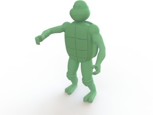 Mutated Turtle who may or may not have studied martial arts