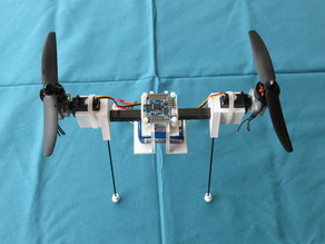 BiCopter