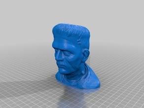 Frankenstein Monster Bust