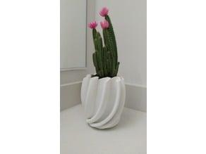 Cactus Planter 1