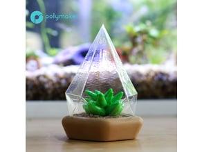 Succulent dome