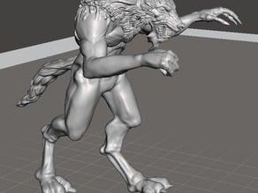 Escaped Werewolf