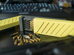 Max's 100 round .22 LR Caliber Ammo Box