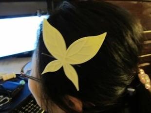 Sena Kashiwazaki's hair pin.