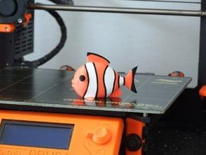 Clownfish (multi-color)