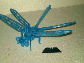 Dragon Fly puzzle