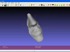 Cement Face Sculpture