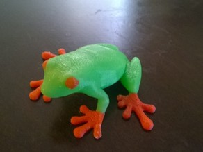 Dual colored Tree Frog