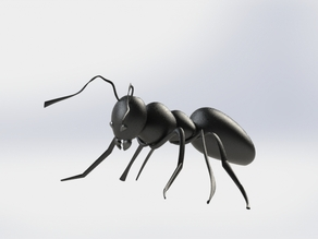 An Ant 3D Model