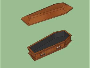 Coffin with Removable Lid
