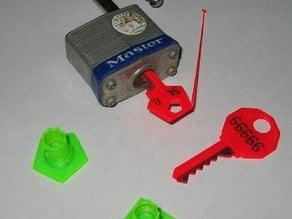 Customizable Safe / House / Padlock keys