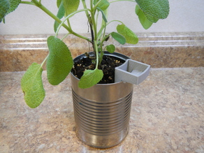 Soup Can Planter