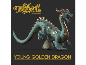 Young Golden Dragon