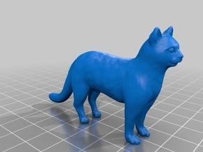 猫(Cat)3Dデータ