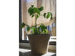 honeycomb planter #2
