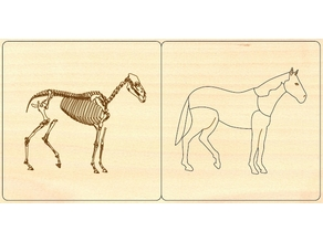 horse mammal zoology animal puzzle montessori for laser cut