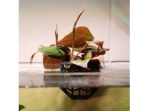 Aquarium plant holder