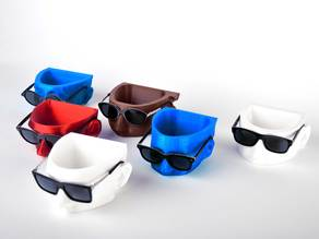 3D Printed Tipton Eyewear display