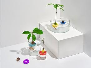 avo - floating avocado growing tool