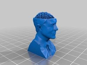 Stephen Colbert's brain